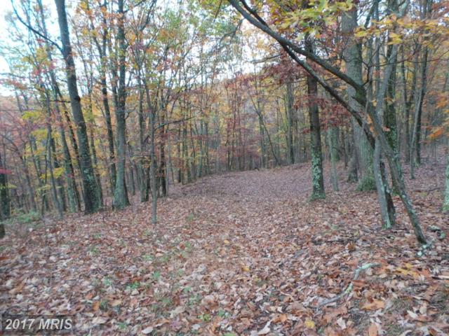 Chickloo Lane, Great Cacapon, WV 25422 (#MO10104803) :: Pearson Smith Realty