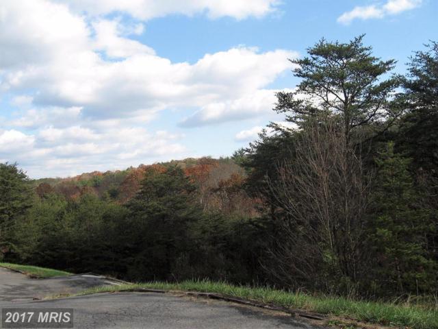 Ridge View Drive, Berkeley Springs, WV 25411 (#MO10105401) :: Pearson Smith Realty