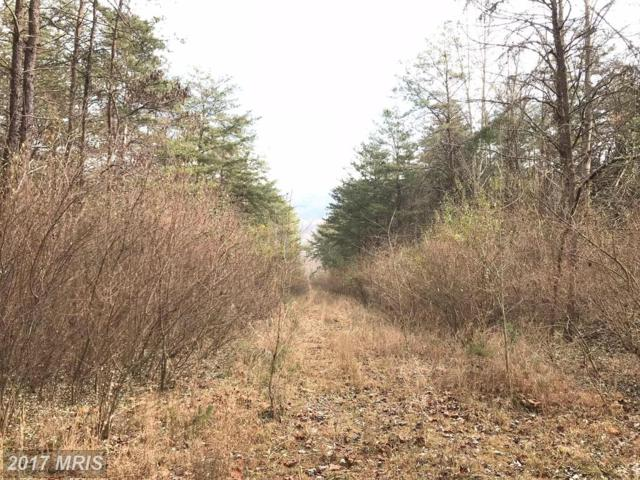 Cedar Point Way, Great Cacapon, WV 25422 (#MO10113221) :: Pearson Smith Realty
