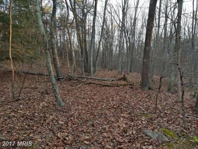 Clear Spring Lane, Berkeley Springs, WV 25411 (#MO10113618) :: Hill Crest Realty