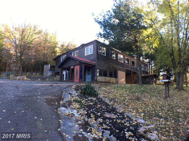 41 Waugh, Berkeley Springs, WV 25411 (#MO10115853) :: Hill Crest Realty