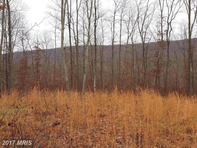 6 Whistling Winds Trail, Berkeley Springs, WV 25411 (#MO10119699) :: Pearson Smith Realty