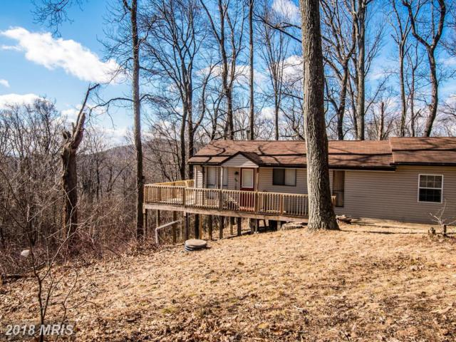 384 Trapper Ridge, Hedgesville, WV 25427 (#MO10176664) :: Keller Williams Pat Hiban Real Estate Group