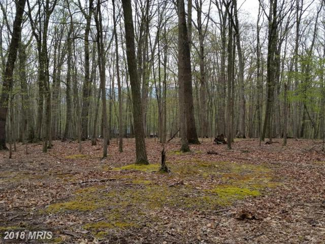 Honey Locust, Great Cacapon, WV 25422 (#MO10179517) :: The Gus Anthony Team