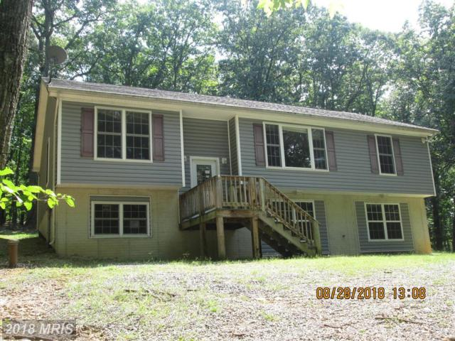 238 Buffalo Run Trail, Berkeley Springs, WV 25411 (#MO10345555) :: Pearson Smith Realty
