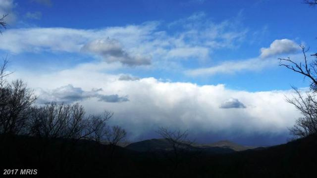 Razor Back Ridge, Great Cacapon, WV 25422 (#MO9879474) :: Pearson Smith Realty