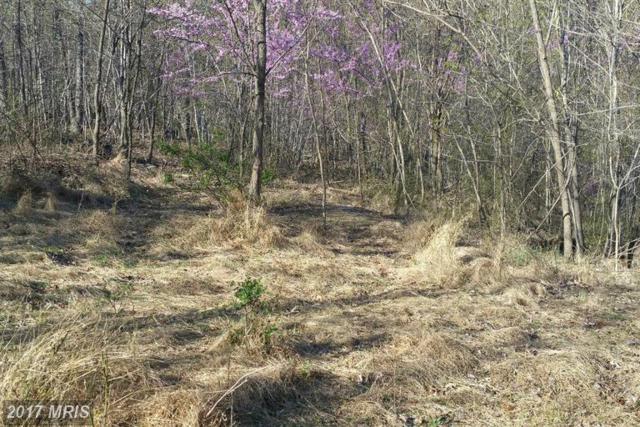 Maverick Trail, Hedgesville, WV 25427 (#MO9918846) :: LoCoMusings