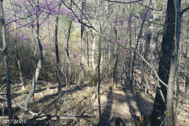 Maverick Trail, Hedgesville, WV 25427 (#MO9918851) :: LoCoMusings