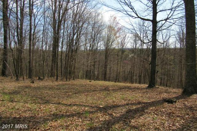 Dogwood Flats, Great Cacapon, WV 25422 (#MO9922053) :: LoCoMusings