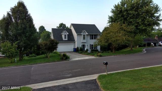 1407 Gladewood Drive, BLACKSBURG, VA 24060 (#MV10063880) :: LoCoMusings