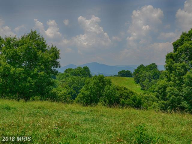 1188 Martins Lane, Arrington, VA 22922 (#NL10301577) :: Jacobs & Co. Real Estate