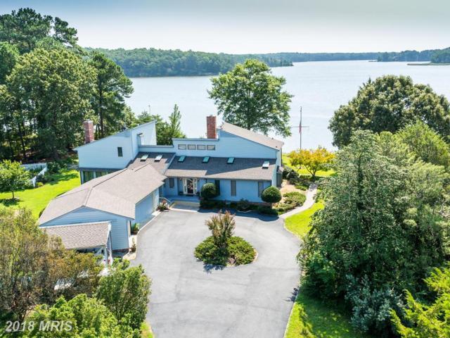1860 Island Point Road, Heathsville, VA 22473 (MLS #NV10134395) :: Explore Realty Group
