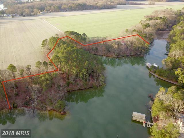 Holly Cove, Reedville, VA 22539 (#NV10325988) :: Arlington Realty, Inc.