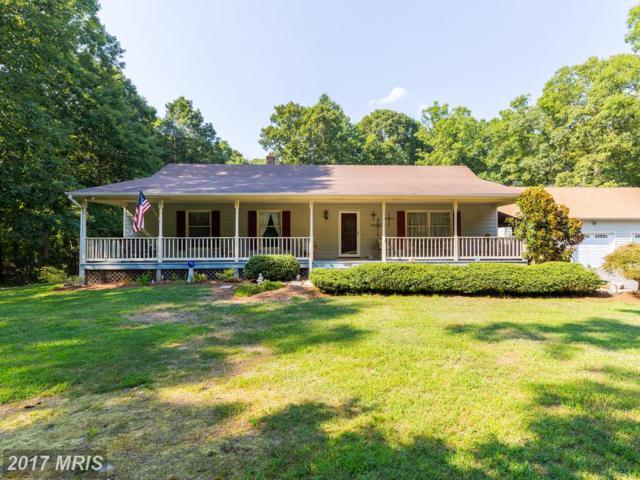 10154 Campfield Drive, Unionville, VA 22567 (#OR10005774) :: Pearson Smith Realty