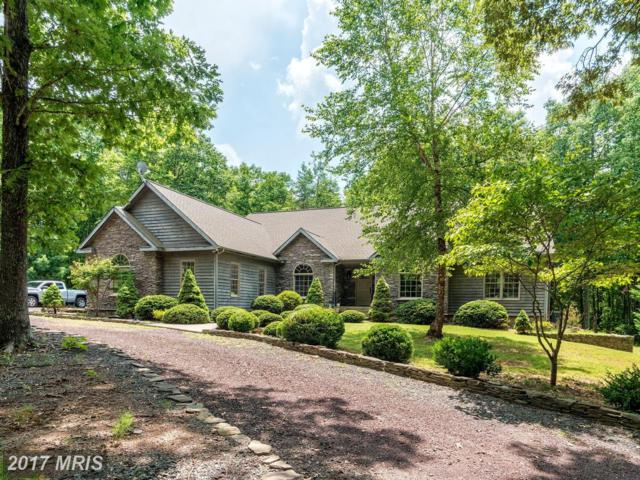 31194 Keifers Ridge Road, Locust Grove, VA 22508 (#OR10009121) :: Green Tree Realty