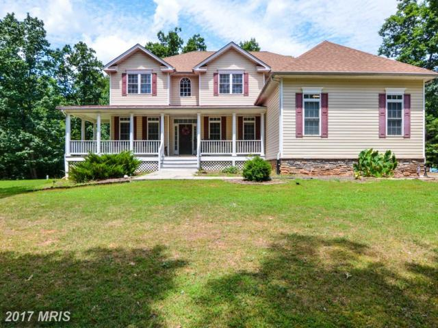 32371 Deep Meadow Lane, Locust Grove, VA 22508 (#OR10009422) :: Green Tree Realty