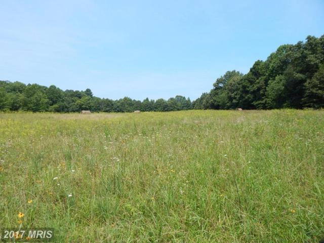 Quann Farm Drive, Rhoadesville, VA 22542 (#OR10010382) :: Pearson Smith Realty
