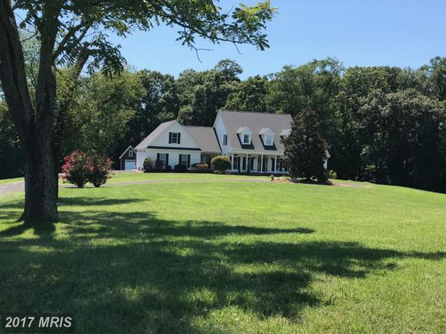 32290 Gadsden Lane, Locust Grove, VA 22508 (#OR10018999) :: Pearson Smith Realty