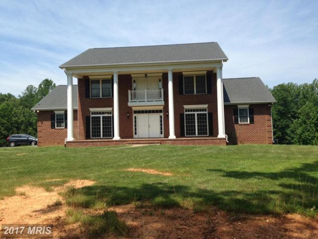23483 Dove Lane, Unionville, VA 22567 (#OR10027523) :: Pearson Smith Realty