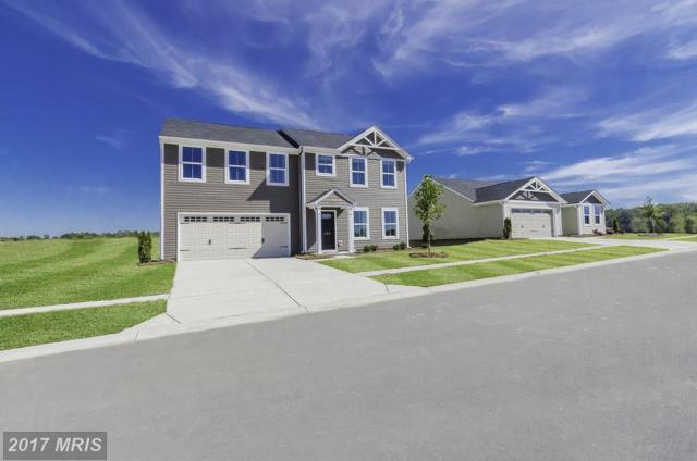 0001 Pheasant Ridge Road, Locust Grove, VA 22508 (#OR10048999) :: Pearson Smith Realty