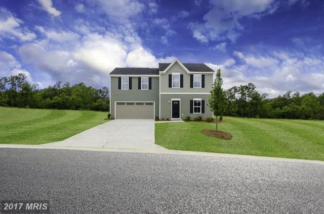 0003 Pheasant Ridge Road, Locust Grove, VA 22508 (#OR10049007) :: Pearson Smith Realty