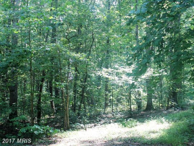 Morel Way, Rhoadesville, VA 22542 (#OR10102665) :: United Real Estate Premier