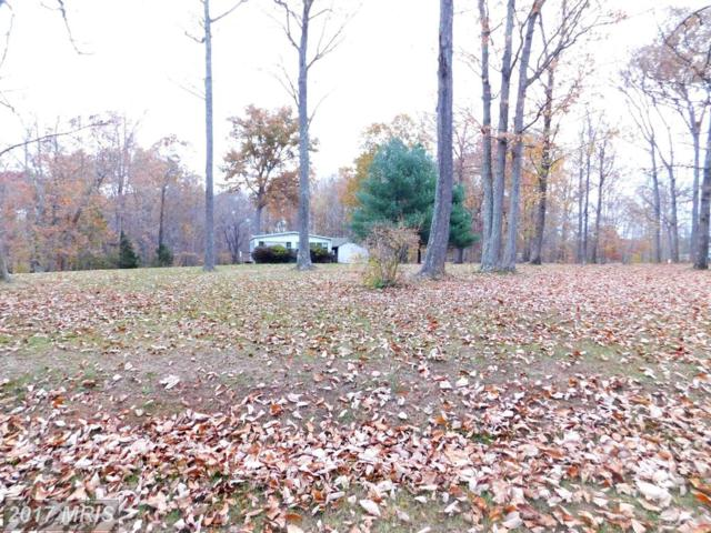 3075 Reci Lane, Locust Grove, VA 22508 (#OR10108566) :: United Real Estate Premier