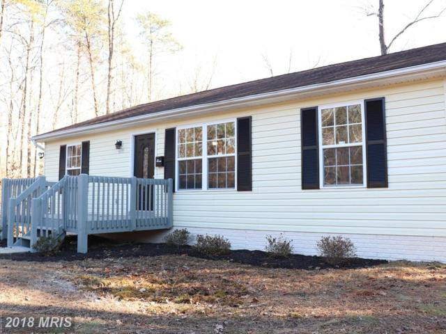 16277 Woodland Drive, Unionville, VA 22567 (#OR10129059) :: Pearson Smith Realty