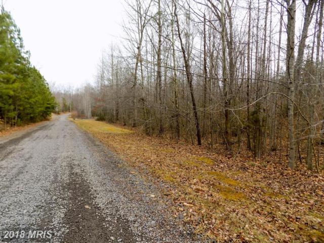 Hetfield Drive, Unionville, VA 22567 (#OR10134013) :: Green Tree Realty