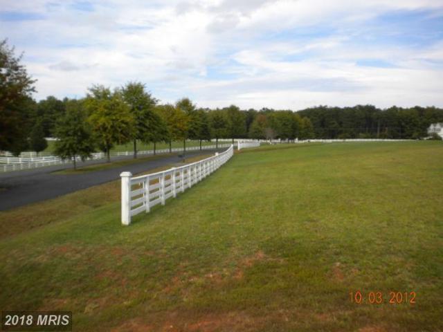 Meadowland Drive, Locust Grove, VA 22508 (#OR10136333) :: Pearson Smith Realty
