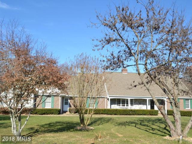 8288 Logging Road, Rhoadesville, VA 22542 (#OR10136444) :: The Nemerow Team