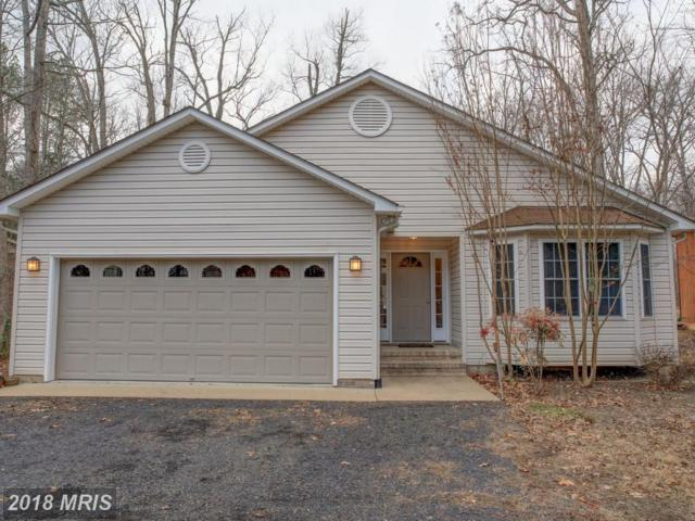 1342 Lakeview Parkway, Locust Grove, VA 22508 (#OR10149706) :: Green Tree Realty