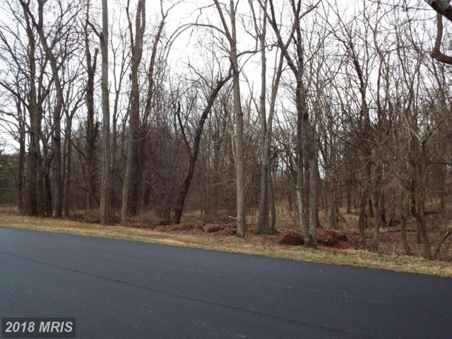 Red Hill Road, Orange, VA 22960 (MLS #OR10158978) :: Explore Realty Group