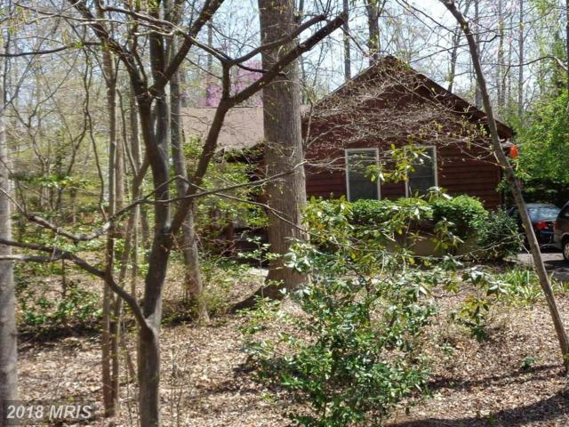 110 Wilderness Drive, Locust Grove, VA 22508 (#OR10213871) :: Green Tree Realty