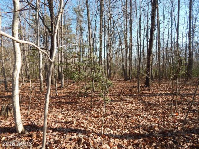 Seminole Lane, Locust Grove, VA 22508 (#OR10217431) :: Green Tree Realty
