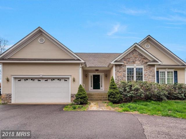 709 Lakeview Parkway, Locust Grove, VA 22508 (#OR10218799) :: Browning Homes Group