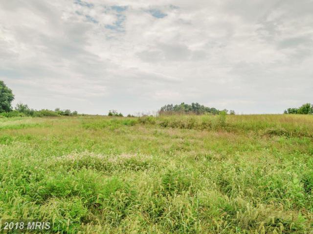 Pennfields Drive, Orange, VA 22960 (#OR10246930) :: RE/MAX Cornerstone Realty