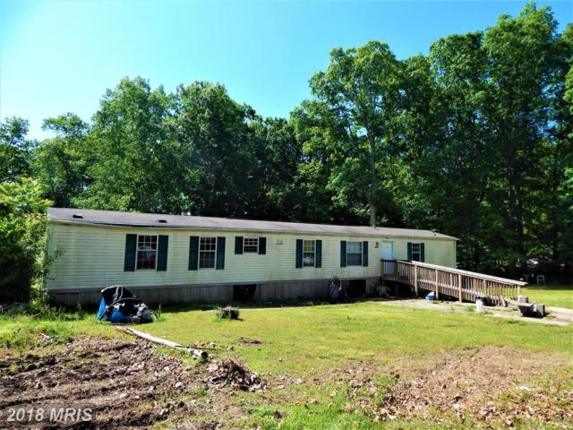 3045 Flat Run Road, Locust Grove, VA 22508 (#OR10249945) :: Green Tree Realty