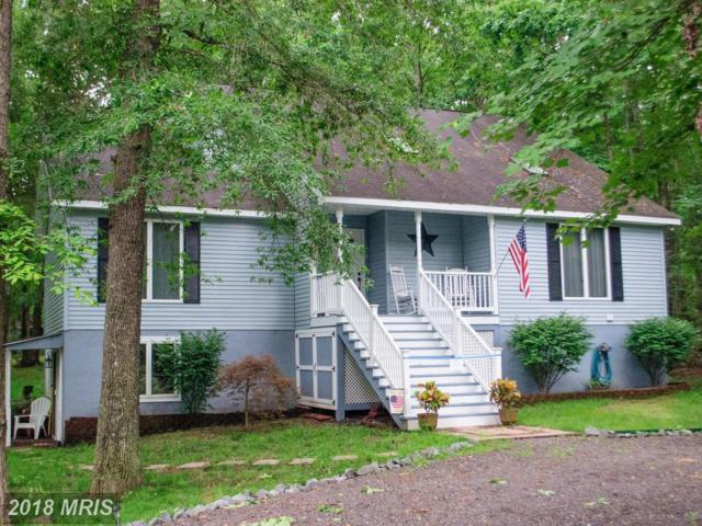 1227 Lakeview Parkway, Locust Grove, VA 22508 (#OR10270839) :: The Gus Anthony Team