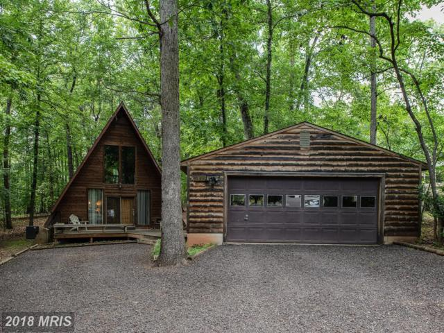 3419 Lakeview Parkway, Locust Grove, VA 22508 (#OR10271270) :: The Gus Anthony Team