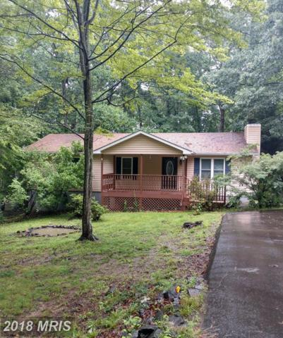 3703 Lakeview Parkway, Locust Grove, VA 22508 (#OR10277720) :: Green Tree Realty