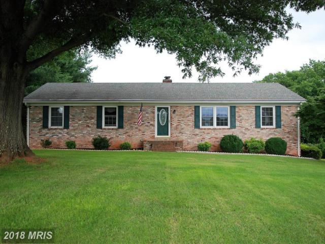 122 Boxley Lane, Orange, VA 22960 (MLS #OR10282447) :: Explore Realty Group