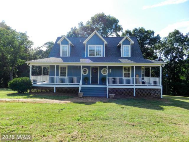 20646 River Road, Rapidan, VA 22733 (#OR10299693) :: Blackwell Real Estate