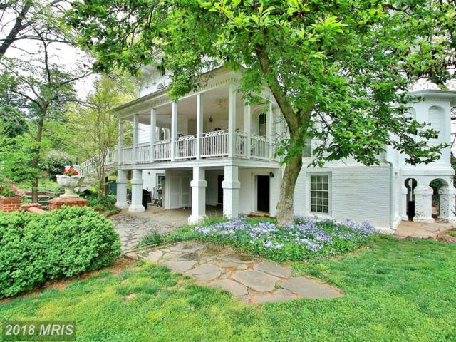 12460 Mayhurst Lane, Orange, VA 22960 (#OR10301429) :: Jacobs & Co. Real Estate