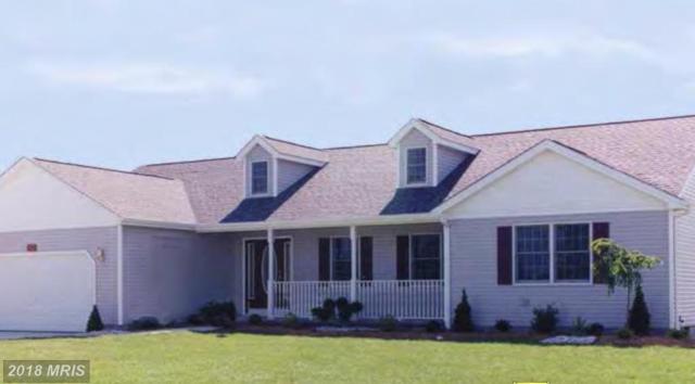 Harbor Drive, Orange, VA 22960 (#OR10335268) :: Colgan Real Estate