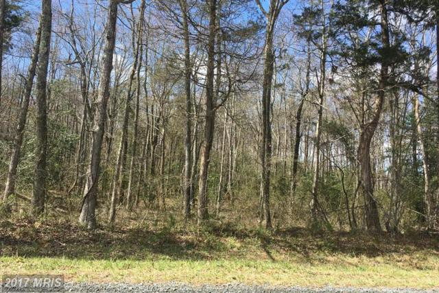 Lot 2 Grasty Gold Mine Road, Rhoadesville, VA 22542 (#OR9900068) :: Pearson Smith Realty