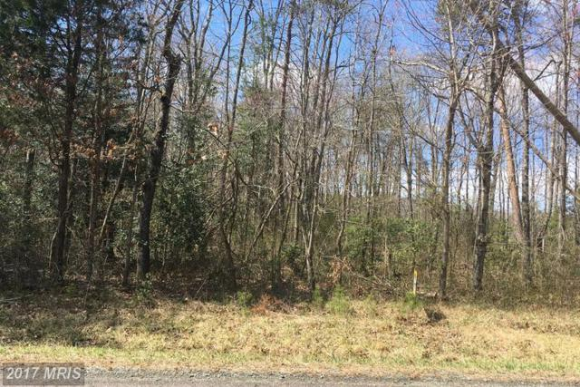 Lot 1 Grasty Gold Mine Road, Rhoadesville, VA 22542 (#OR9900070) :: Pearson Smith Realty
