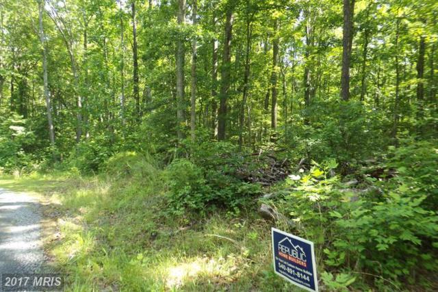 Colonial Lane, Locust Grove, VA 22508 (#OR9910877) :: LoCoMusings