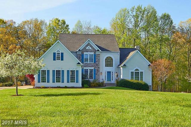 32315 Deep Meadow Lane, Locust Grove, VA 22508 (#OR9941440) :: Pearson Smith Realty