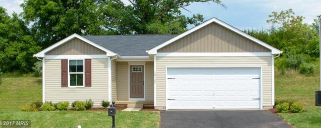 5 Pheasant Ridge Road, Locust Grove, VA 22508 (#OR9957697) :: LoCoMusings